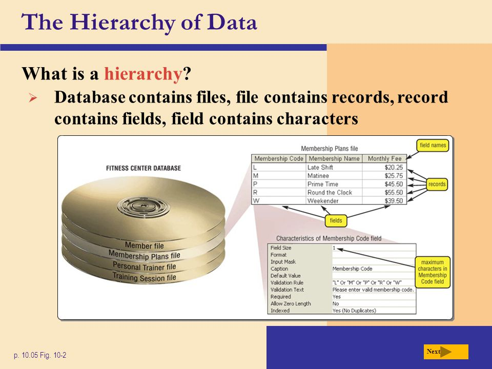 The Hierarchy of Data What is a hierarchy? p. 10.05 Fig. 10-2 Next  Database contains files, file contains records, record contains fields, field con