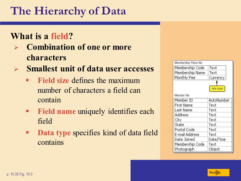 The Hierarchy of Data What is a field? p. 10.05 Fig. 10-3 Next  Combination of one or more characters  Smallest unit of data user accesses  Field s