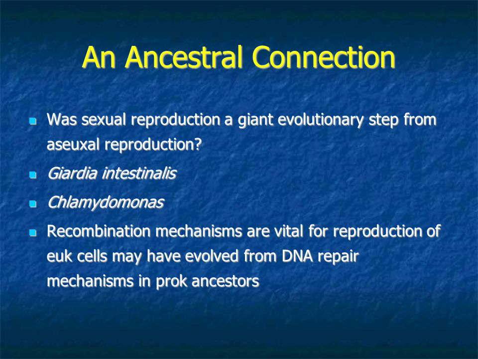 An Ancestral Connection Was sexual reproduction a giant evolutionary step from aseuxal reproduction? Was sexual reproduction a giant evolutionary step