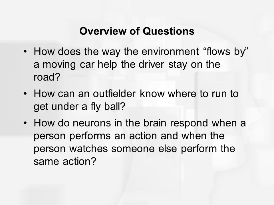 Overview of Questions How does the way the environment flows by a moving car help the driver stay on the road.