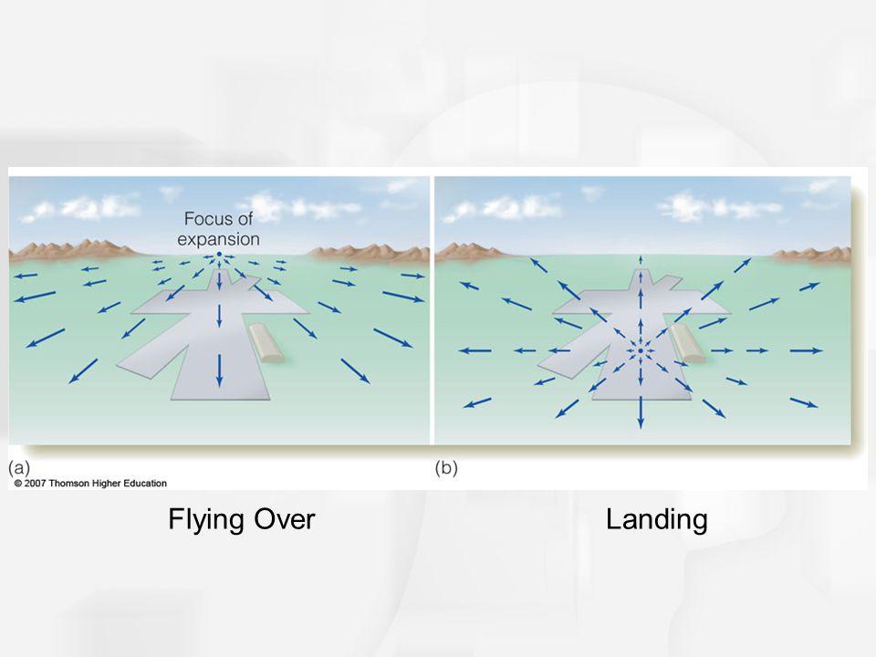 Flying OverLanding