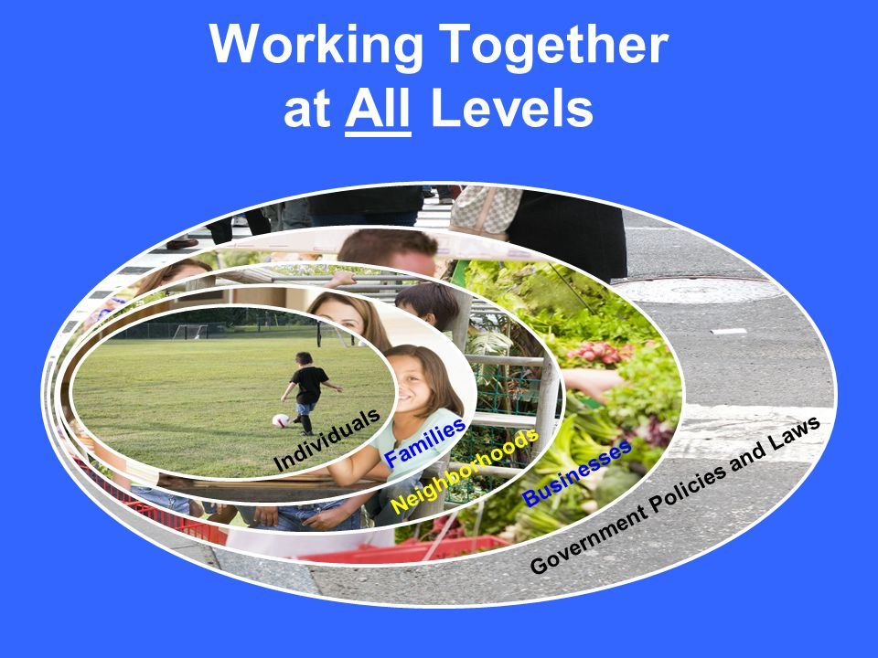Working Together at All Levels Government Policies and Laws Businesses / Neighborhoods Families Individuals