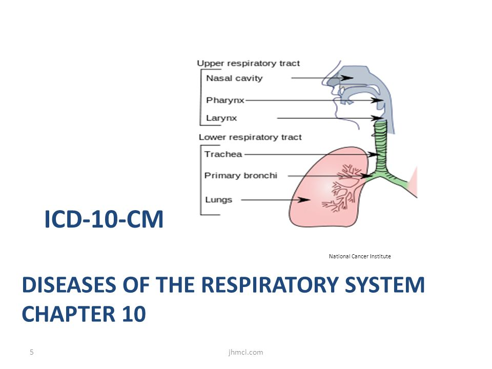 DISEASES OF THE RESPIRATORY SYSTEM CHAPTER 10 ICD-10-CM National Cancer Institute 5jhmci.com