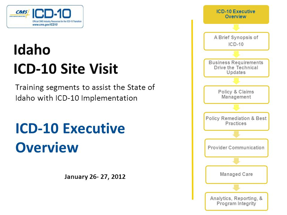 Agenda Executive Support What is ICD-10.Nature of Changes Why should I Care.