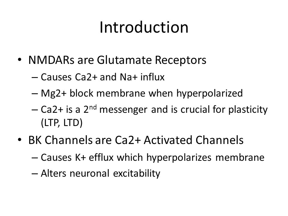 Introduction NMDARs are Glutamate Receptors – Causes Ca2+ and Na+ influx – Mg2+ block membrane when hyperpolarized – Ca2+ is a 2 nd messenger and is crucial for plasticity (LTP, LTD) BK Channels are Ca2+ Activated Channels – Causes K+ efflux which hyperpolarizes membrane – Alters neuronal excitability