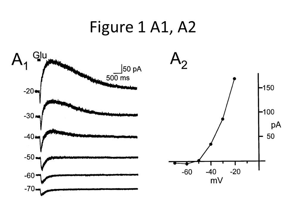Figure 1 A1, A2