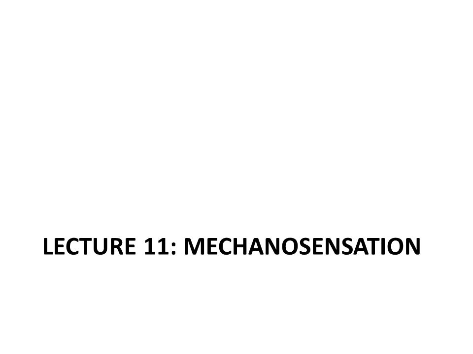 LECTURE 11: MECHANOSENSATION