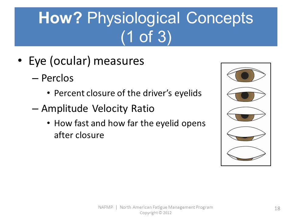 NAFMP | North American Fatigue Management Program Copyright © 2012 18 How? Physiological Concepts (1 of 3) Eye (ocular) measures – Perclos Percent clo