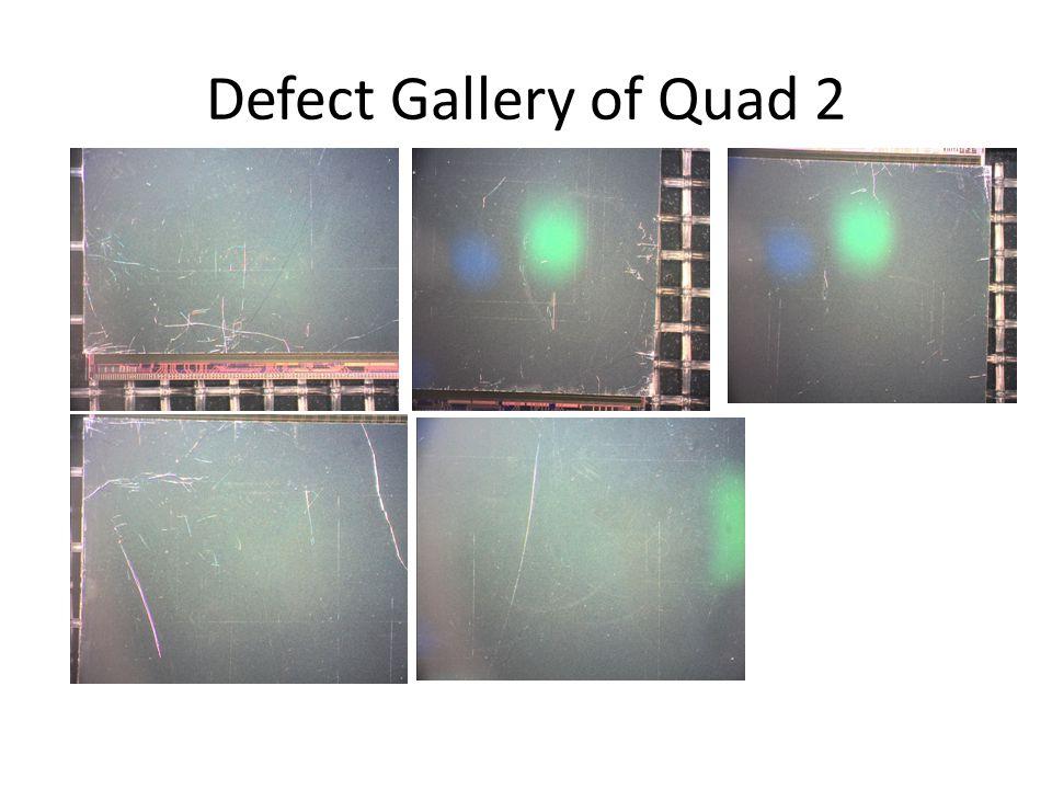 Defect Gallery of Quad 2
