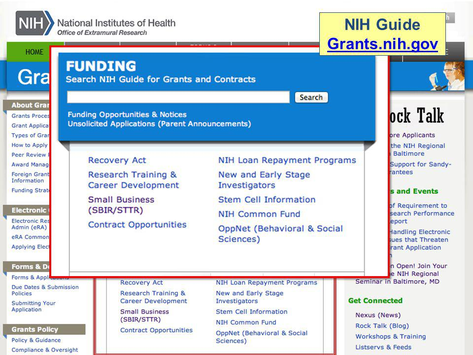 NIH Guide Grants.nih.gov Grants.nih.gov