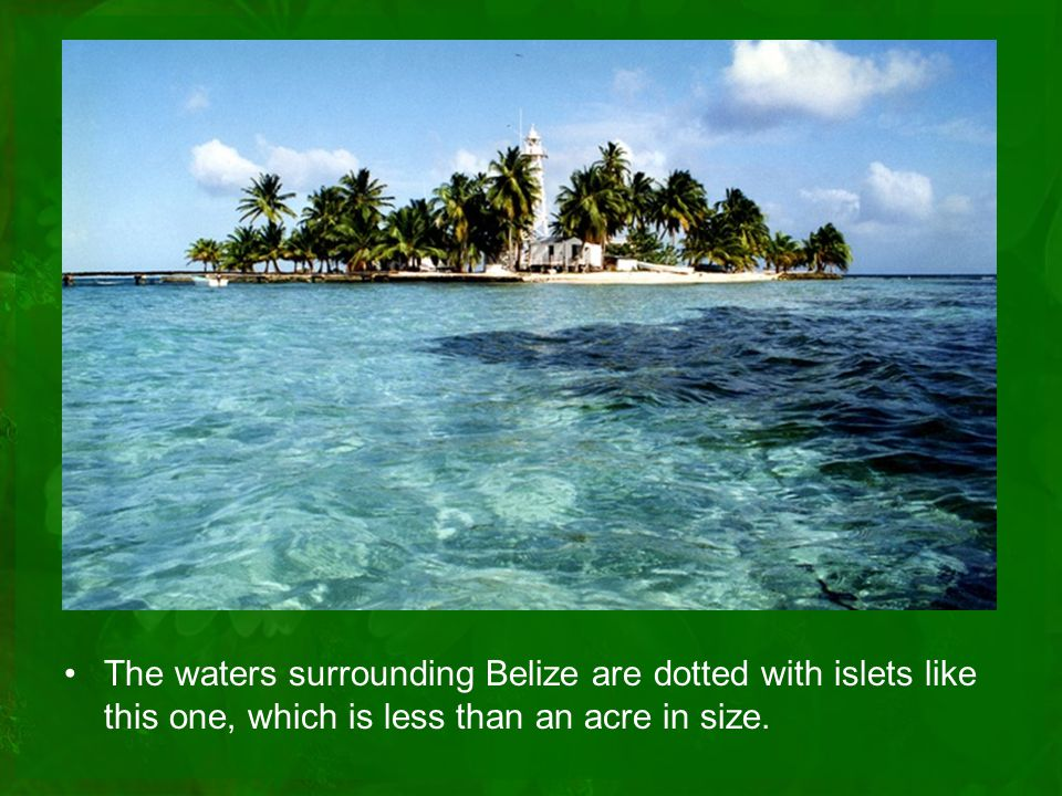 The waters surrounding Belize are dotted with islets like this one, which is less than an acre in size.