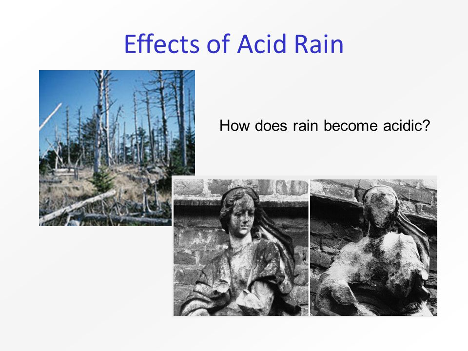 Effects of Acid Rain How does rain become acidic