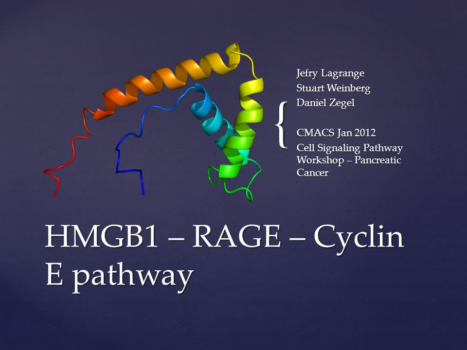 { Jefry Lagrange Stuart Weinberg Daniel Zegel CMACS Jan 2012 Cell Signaling Pathway Workshop – Pancreatic Cancer HMGB1 – RAGE – Cyclin E pathway