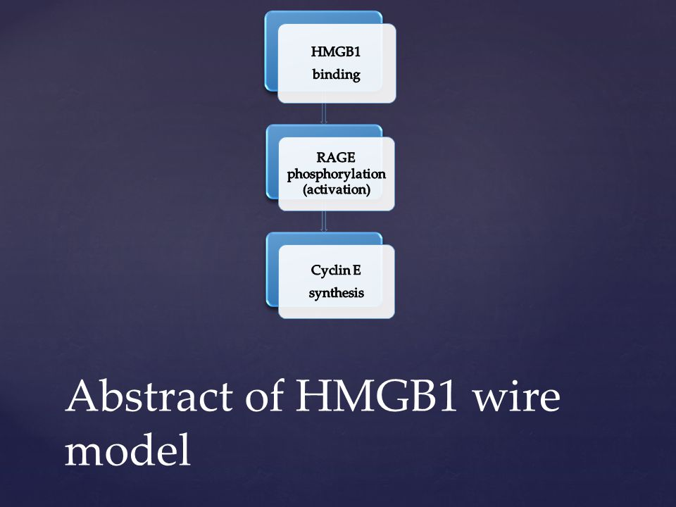 Abstract of HMGB1 wire model