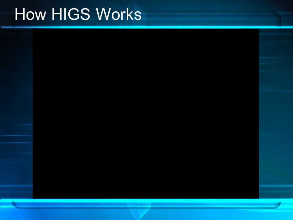 How HIGS Works
