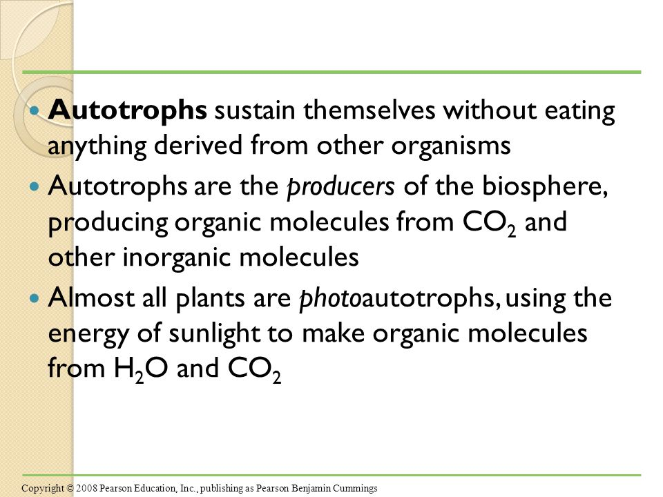 Photosynthesis occurs in plants, algae, certain other protists, and some prokaryotes These organisms feed not only themselves but also most of the living world Copyright © 2008 Pearson Education, Inc., publishing as Pearson Benjamin Cummings