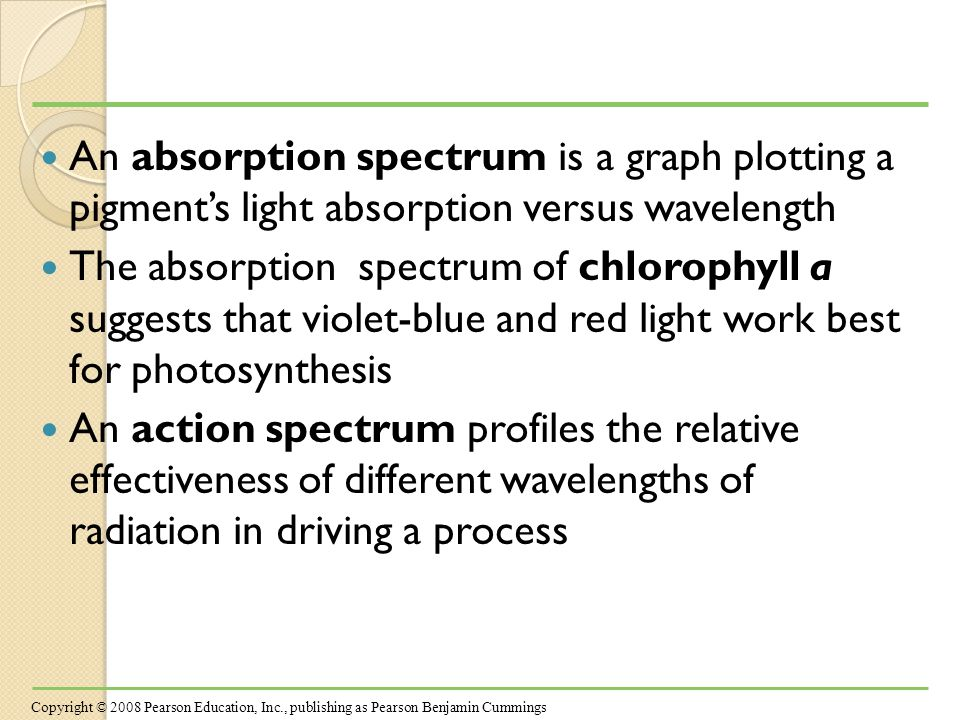 An absorption spectrum is a graph plotting a pigment's light absorption versus wavelength The absorption spectrum of chlorophyll a suggests that violet-blue and red light work best for photosynthesis An action spectrum profiles the relative effectiveness of different wavelengths of radiation in driving a process Copyright © 2008 Pearson Education, Inc., publishing as Pearson Benjamin Cummings
