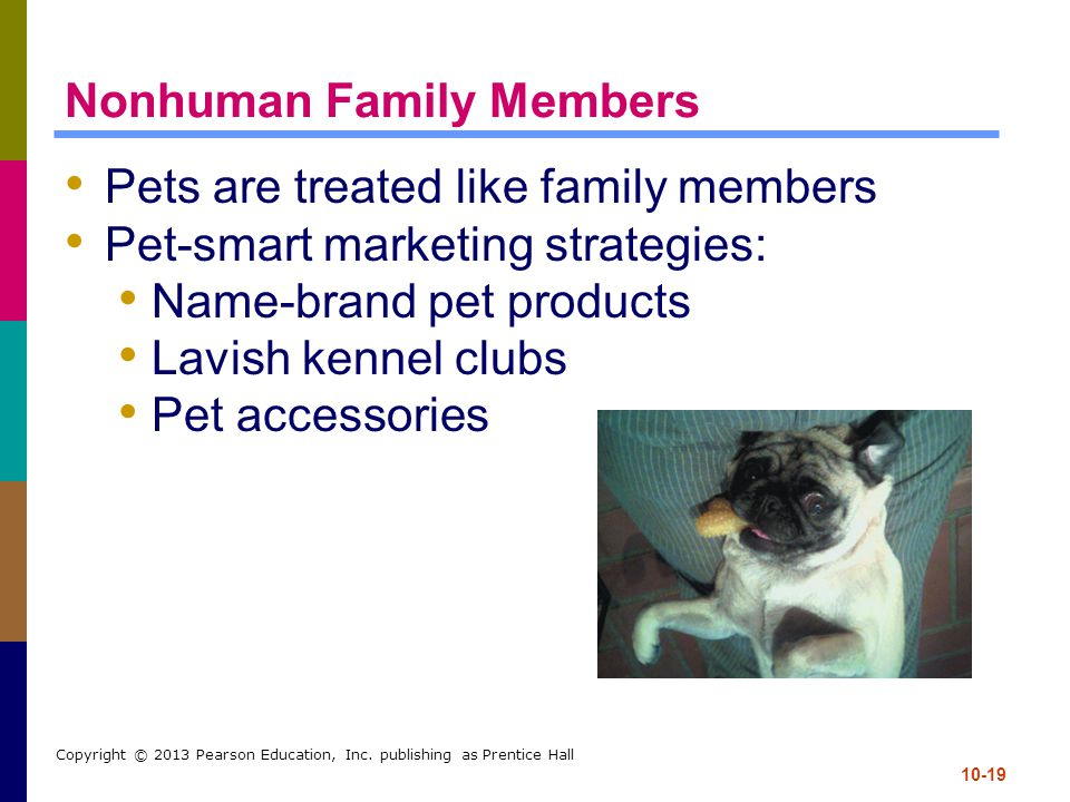 10-19 Copyright © 2013 Pearson Education, Inc. publishing as Prentice Hall Nonhuman Family Members Pets are treated like family members Pet-smart mark
