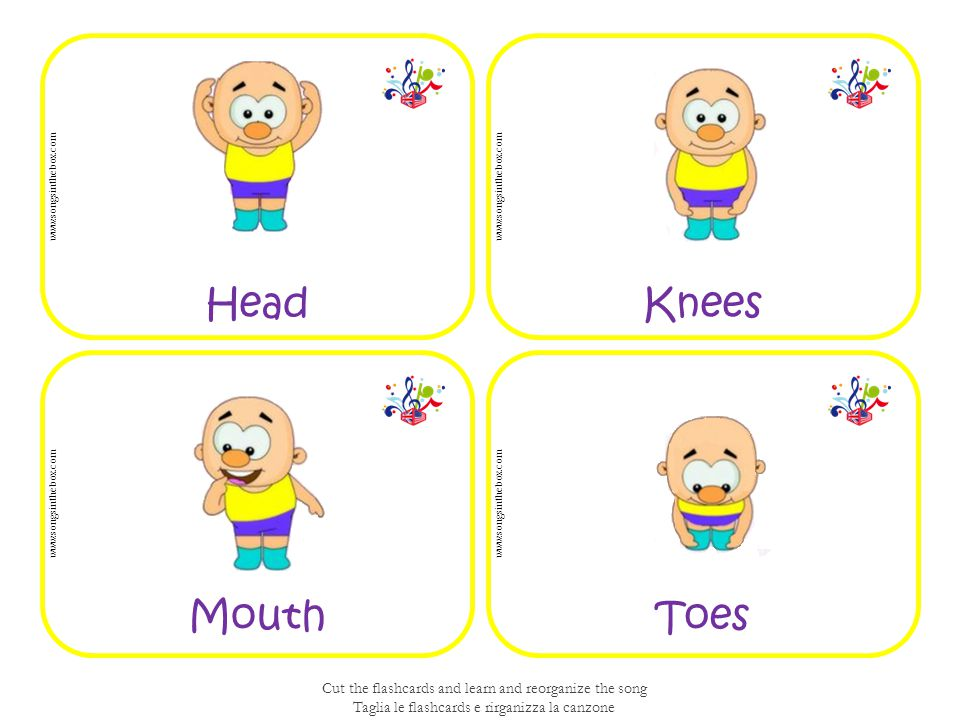 ToesMouth KneesHead www.songsinthebox.com Cut the flashcards and learn and reorganize the song Taglia le flashcards e rirganizza la canzone