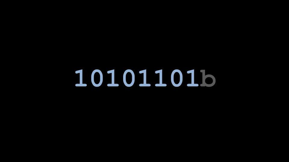 10101101b