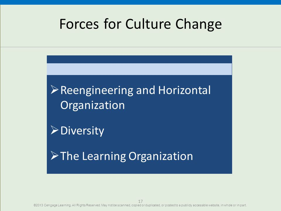 17 Forces for Culture Change  Reengineering and Horizontal Organization  Diversity  The Learning Organization ©2013 Cengage Learning.