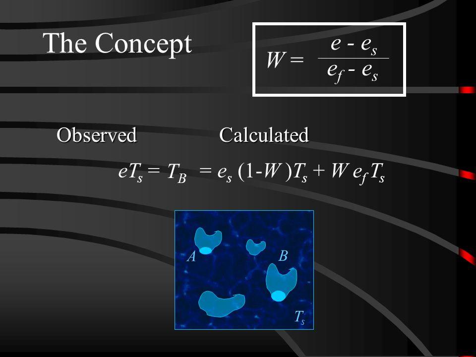 TsTs The Concept e - e s e f - e s W = eT s =CalculatedObserved TBTB = e s (1-W )T s + W e f T s B A
