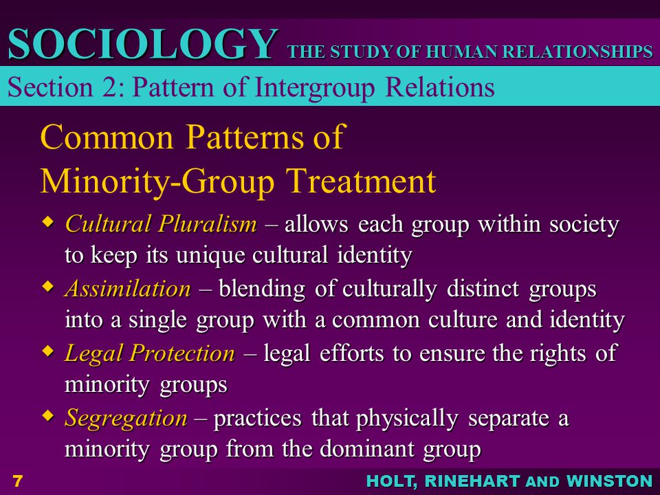 THE STUDY OF HUMAN RELATIONSHIPS SOCIOLOGY HOLT, RINEHART AND WINSTON 7 Common Patterns of Minority-Group Treatment  Cultural Pluralism – allows each