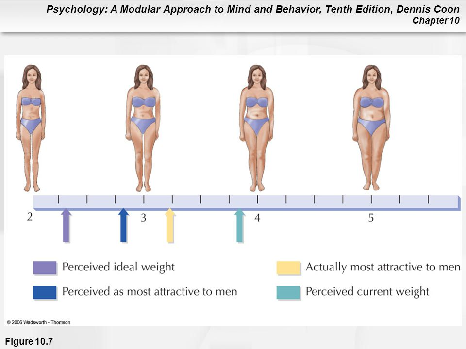 Psychology: A Modular Approach to Mind and Behavior, Tenth Edition, Dennis Coon Chapter 10 Figure 10.7
