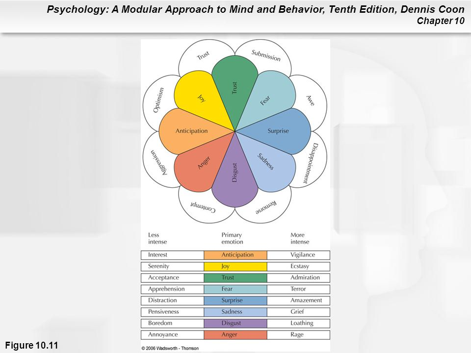 Psychology: A Modular Approach to Mind and Behavior, Tenth Edition, Dennis Coon Chapter 10 Figure 10.11