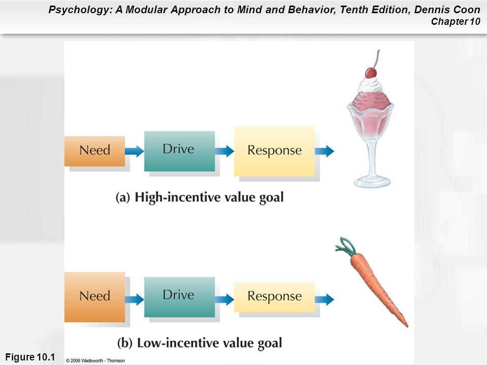 Psychology: A Modular Approach to Mind and Behavior, Tenth Edition, Dennis Coon Chapter 10 Hunger: Big Mac Attack.