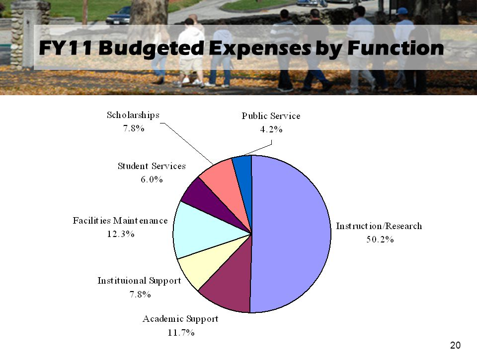 FY11 Budgeted Expenses by Function 20