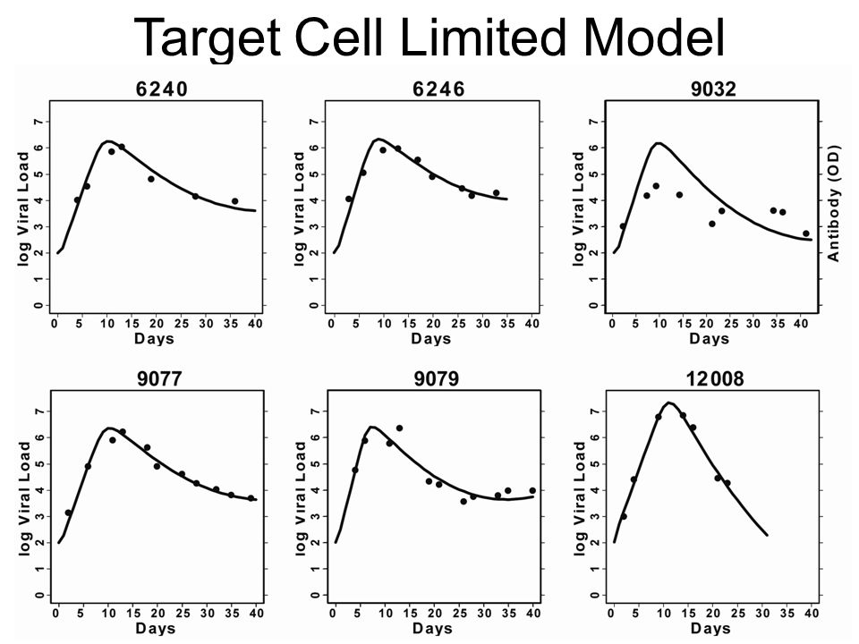 Target Cell Limited Model