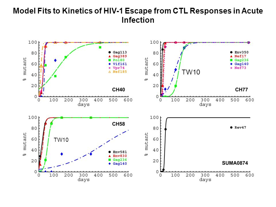 Model Fits to Kinetics of HIV-1 Escape from CTL Responses in Acute Infection TW10