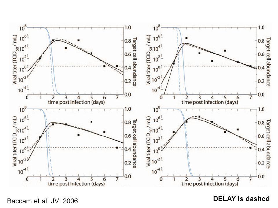 DELAY is dashed Baccam et al. JVI 2006