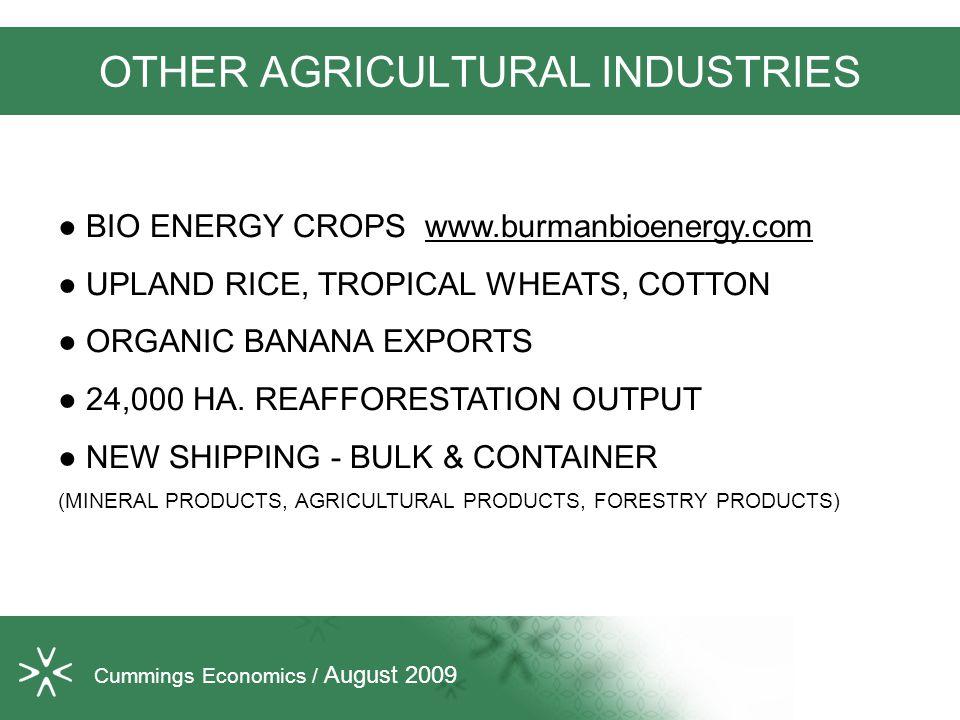 OTHER AGRICULTURAL INDUSTRIES ● BIO ENERGY CROPS www.burmanbioenergy.com ● UPLAND RICE, TROPICAL WHEATS, COTTON ● ORGANIC BANANA EXPORTS ● 24,000 HA.