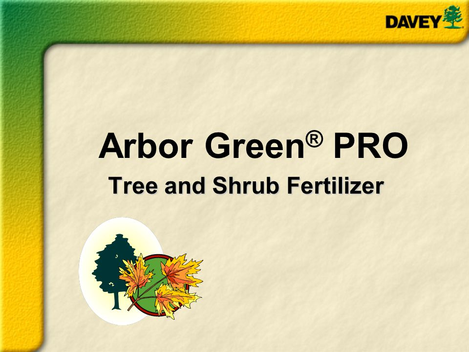 Arbor Green PRO is ideal to use on sensitive, newly planted, drought- stressed, or trees in decline.