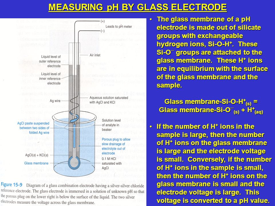The glass membrane of a pH electrode is made out of silicate groups with exchangeable hydrogen ions, Si-O-H +. These Si-O – groups are attached to the