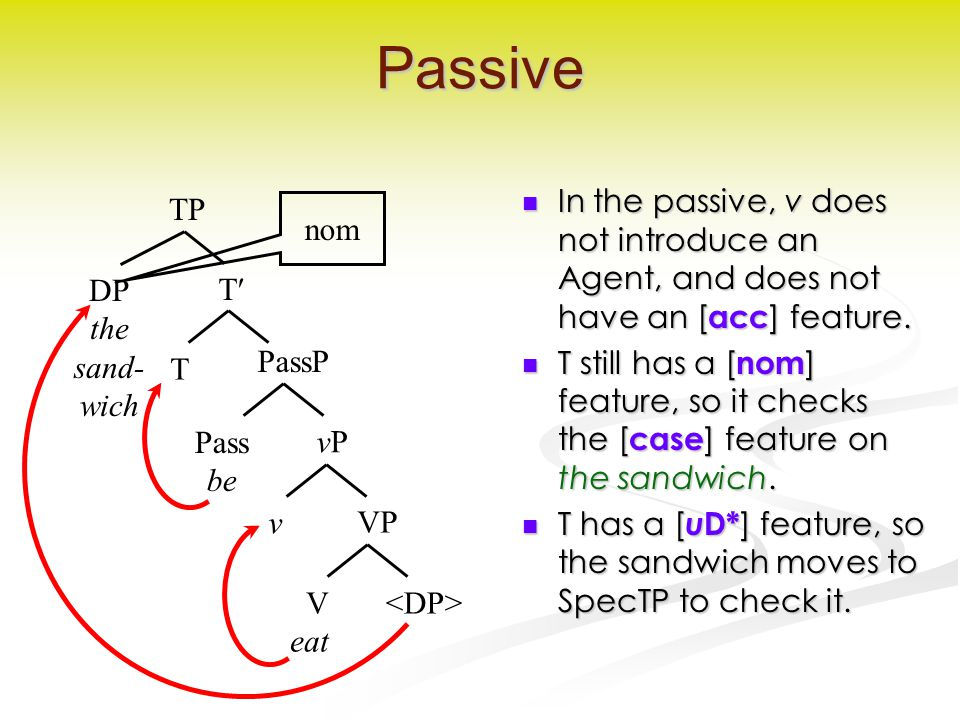 Passive In the passive, v does not introduce an Agent, and does not have an [ acc ] feature.