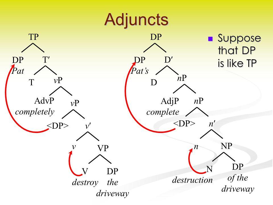 Adjuncts Suppose that DP is like TP Suppose that DP is like TP VPVP V destroy v DP the driveway vPvP v vPvP NPNP N destruction n n nPnP nPnP AdjP complete T T TP DP Pat D D DP DP Pat's AdvP completely DP of the driveway