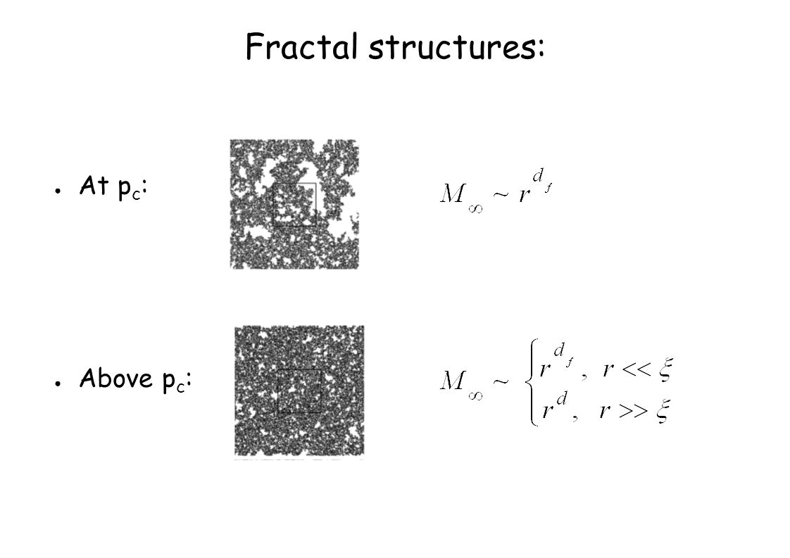 Fractal structures: ● At p c : ● Above p c :