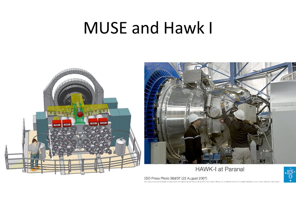 MUSE and Hawk I