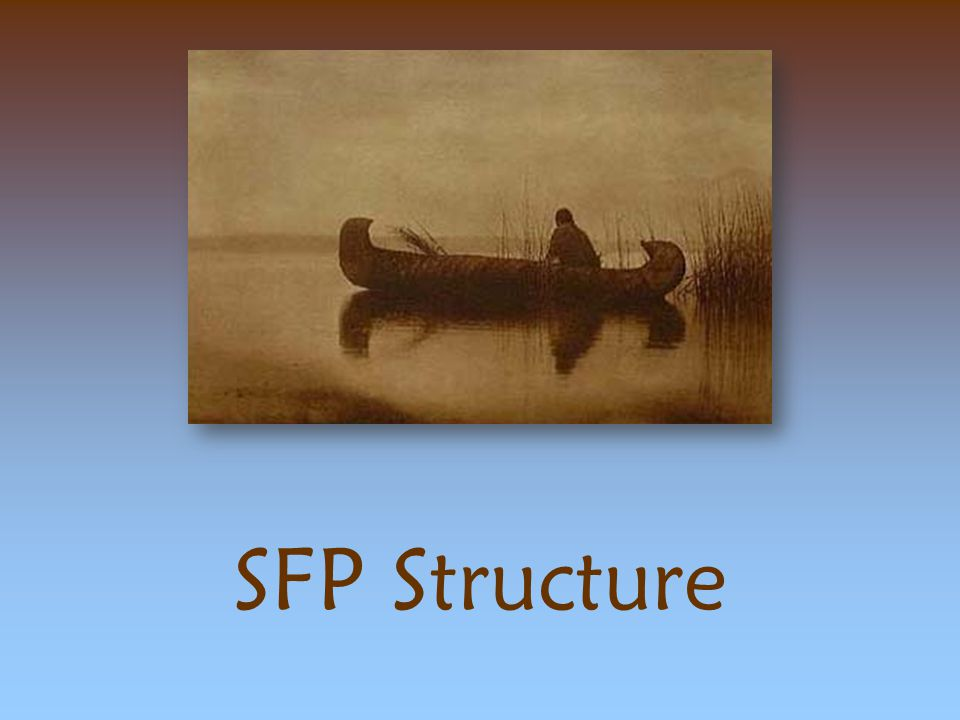 SFP Structure