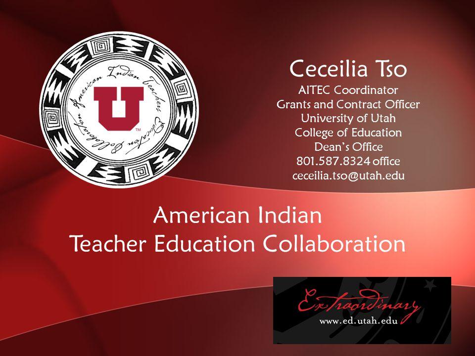 University of Utah 801.577.2668 ctso2001@yahoo.com STRENGTHENING FAMILIES PROGRAM American Indian Trainer of Trainers