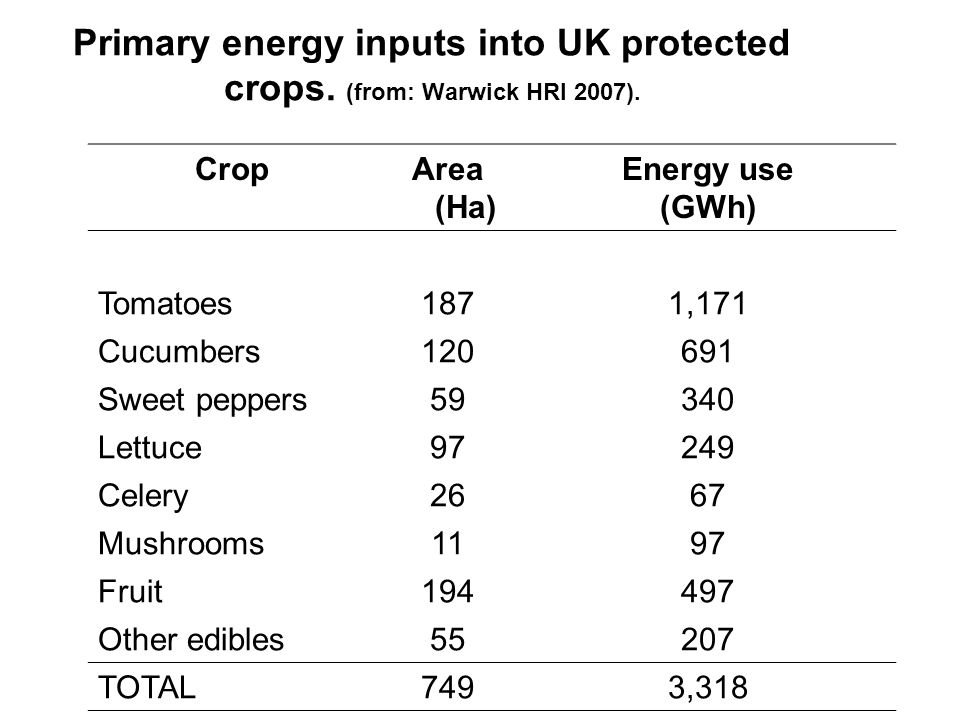 More comparisons The annual methane emissions from a single dairy cow have an equivalent global warming potential to the production of 0.27 t of UK tomatoes.