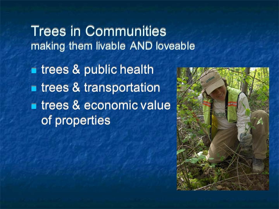 Trees in Communities making them livable AND loveable trees & public health trees & transportation trees & economic value of properties trees & public health trees & transportation trees & economic value of properties
