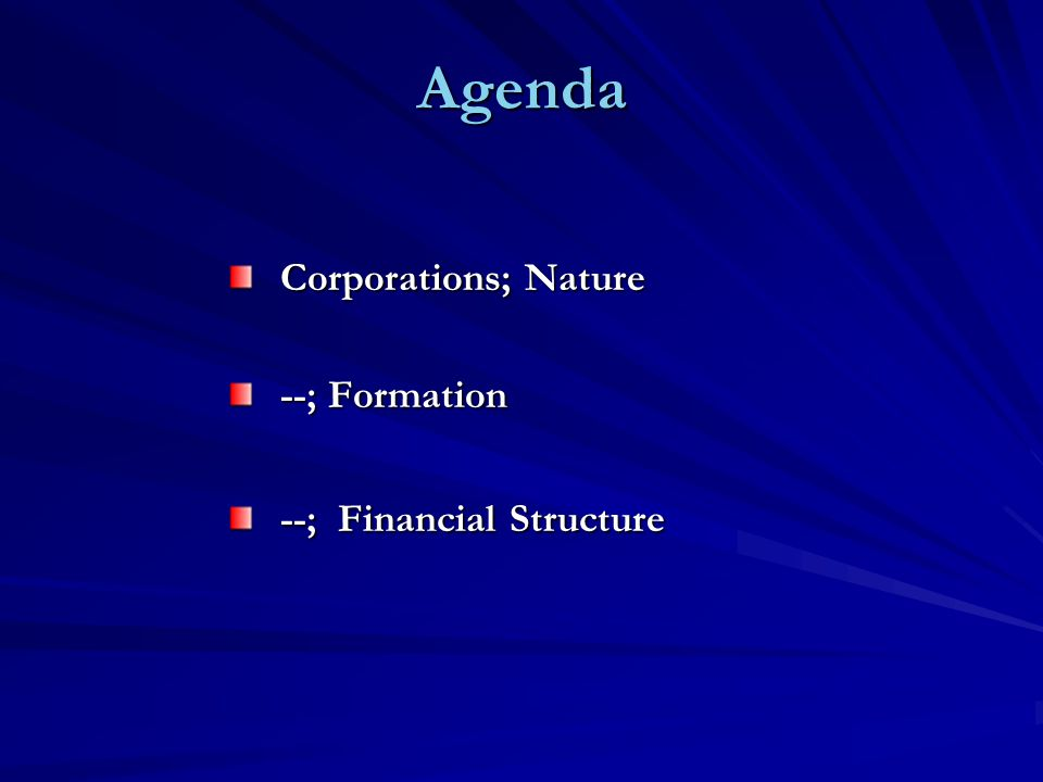 Agenda Corporations; Nature --; Formation --; Financial Structure