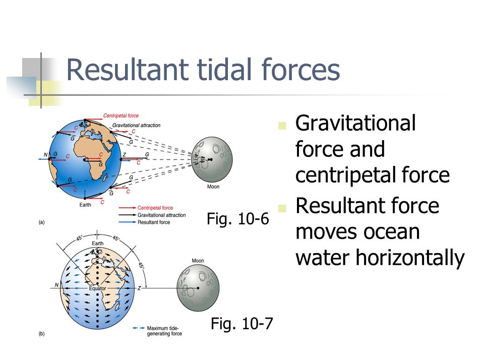 Tidal bulges Two equal and opposite tidal bulges Earth rotates beneath tidal bulges Two high tides and two low tides per day Fig.