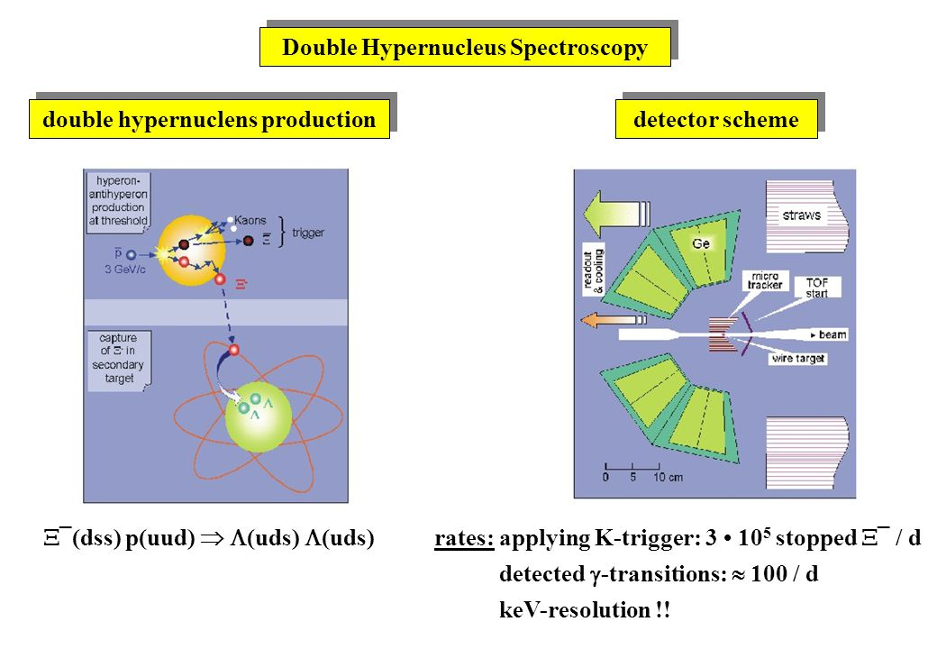 Double Hypernucleus Spectroscopy double hypernuclens production detector scheme  ¯(dss) p(uud)   (uds)  (uds)rates: applying K-trigger: 3 10 5 stopped  ¯ / d detected  -transitions:  100 / d keV-resolution !!