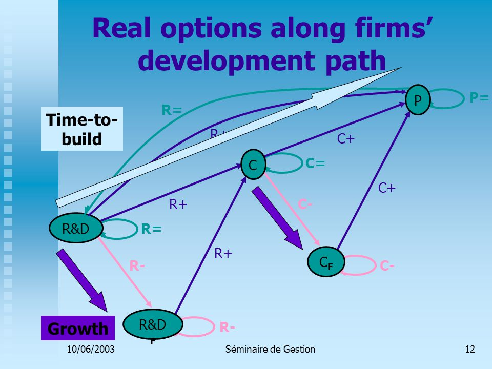 10/06/2003Séminaire de Gestion12 Real options along firms' development path R&D C P R&D F CFCF R+ C+ P= C+ R+ R- C- R= C= R+ R= Time-to- build Growth