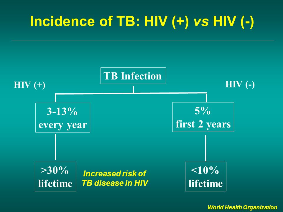 Incidence of TB: HIV (+) vs HIV (-) TB Infection 3-13% every year 5% first 2 years >30% lifetime <10% lifetime HIV (+) HIV (-) World Health Organization Increased risk of TB disease in HIV